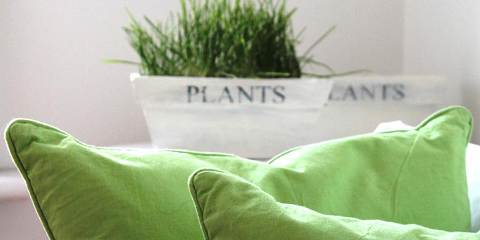 green pillows and white plant pots