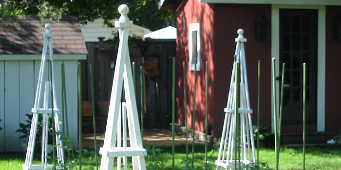 kitchen garden obelisks